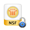 remove nsf file protection