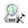 scan and recover bkf file
